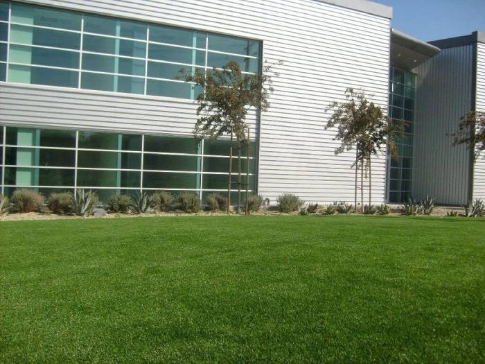 commercial artificial turf installed outside of commercial office building
